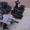 Коробки Отбора Мощности на СпецТехнику... - Изображение #6, Объявление #714317