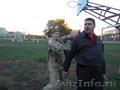 Проведение семинаров по русскому рукопашному бою