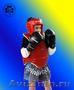 Ушу и тайский бокс