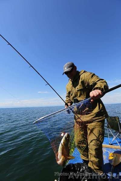 байкал рыбалка сезон