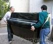 Пианино, рояль, любое оборудование-грузчики такелажники. Транспорт для перевозки - Изображение #3, Объявление #1378592